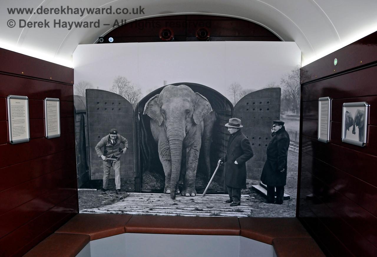 Elephant Van HK 190817 17673 E