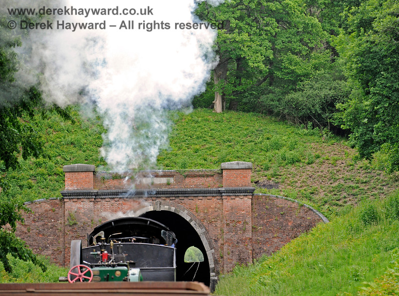 30541 about to enter West Hoathly tunnel. There is light at the end of the tunnel.... 16.06.2019 17137