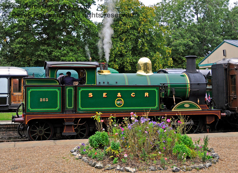 263 stands amongst the flowers at Horsted Keynes. 22.09.2013 9754
