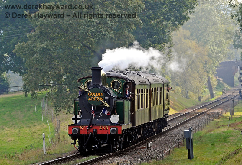 263 emerges from Mill Place Cutting with the Golden Arrow.  04.10.2016 12006