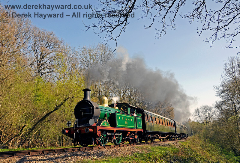 The trees are just coming into leaf as 263 steams into Lindfield Wood. 08.04.2017 17080