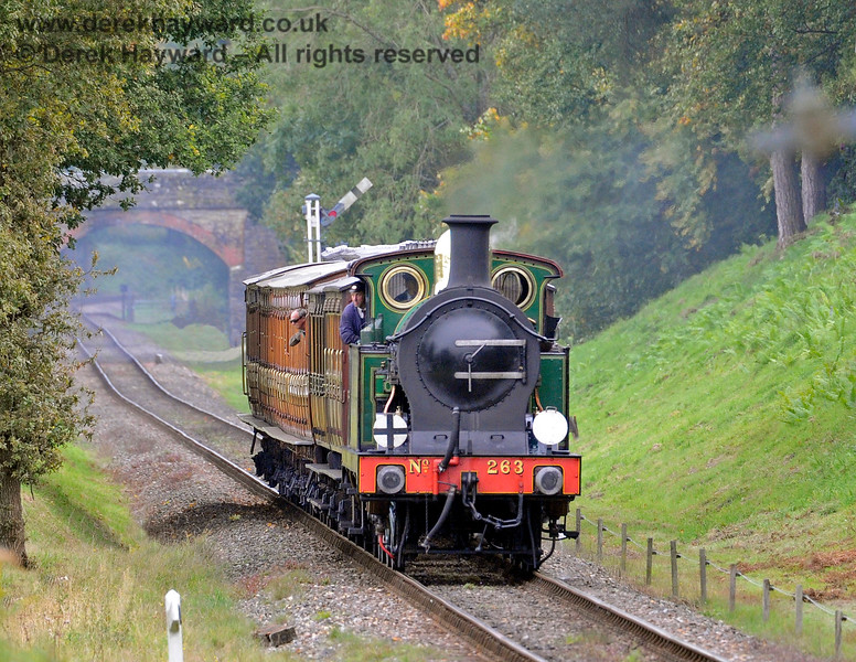 263 steams into Mill Place Cutting. 10.10.2015 12202