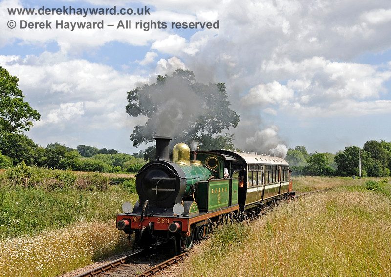 263 approaching Ketches Halt, with Captain Baxter lurking at the rear of the Observation Car. 27.06.2015 13102