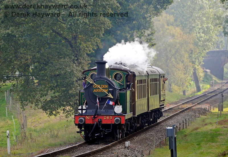 263 emerges from Mill Place Cutting with the Golden Arrow. 04.10.2015 12005