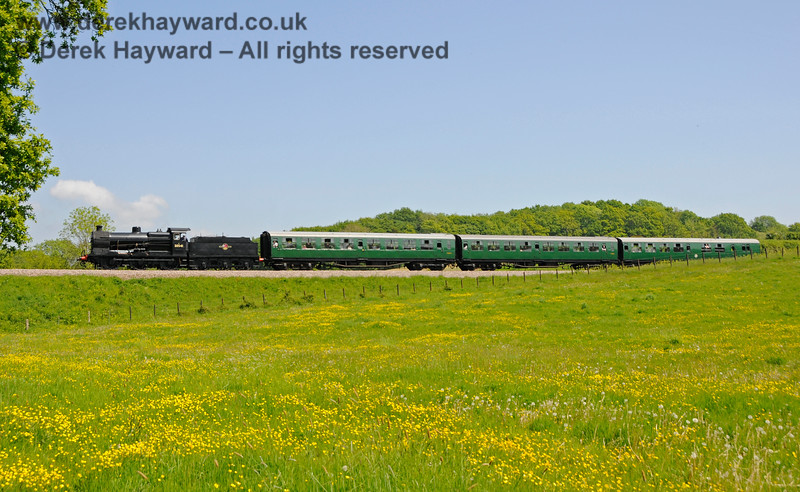 The buttercups are in bloom as 30541 leaves Rock Cutting and approaches Tremains foot crossing. 20.05.2018 18387