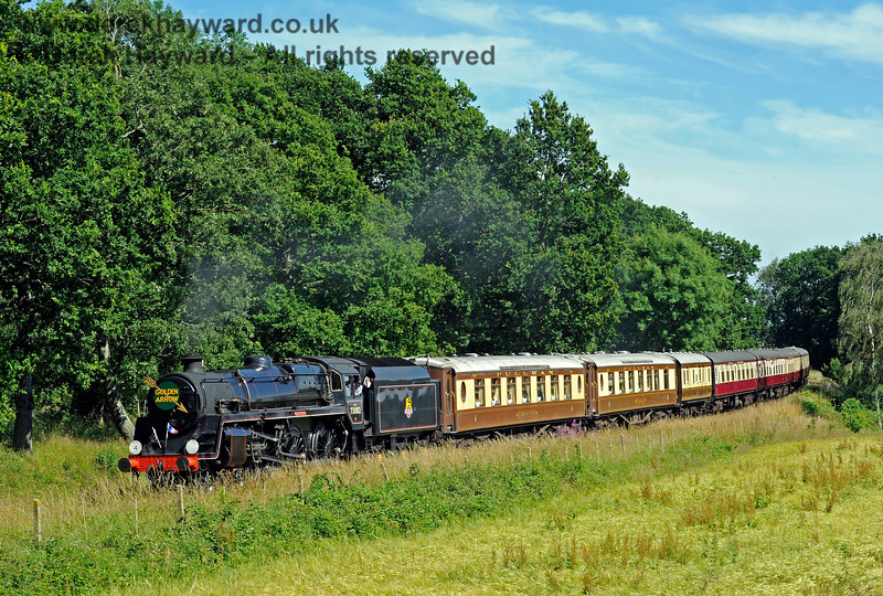 73082 Camelot rounds the bend north of Sloop Bridge with a combined Pullman and Wealden Rambler. 09.07.2017 15732