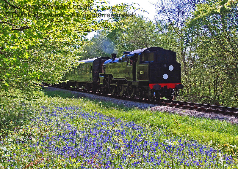 80151 passes a display of bluebells near Freshfield. 01.05.2007