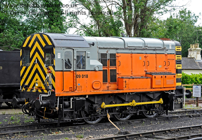 09018 on shed at Sheffield Park.  25.06.2016 13416