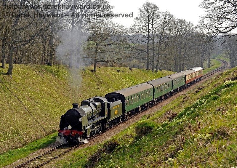 The primroses are out on the side of the cutting as 1638 approaches Three Arch Bridge.  10.04.2015  10711