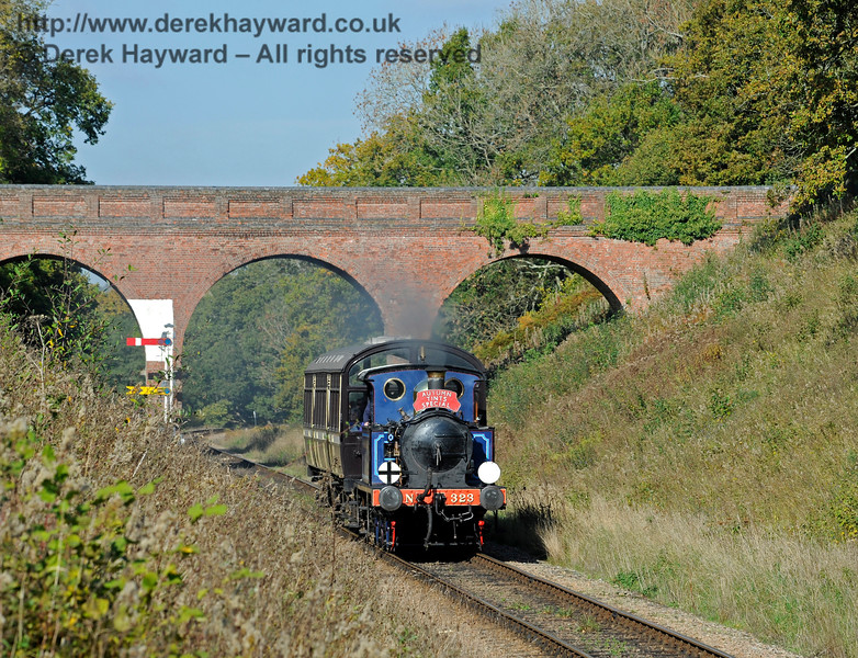 323 makes it's way through the lineside growth south of Three Arch Bridge with an Autumn Tints Special.  20.10.2015 12249