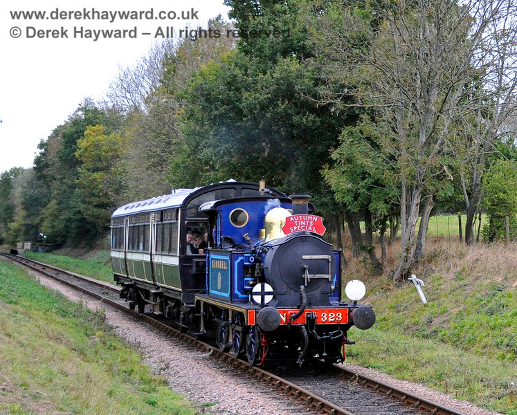 323 Bluebell steams south from Ketches Halt with an Autumn Tints train. 21.10.2011 3088