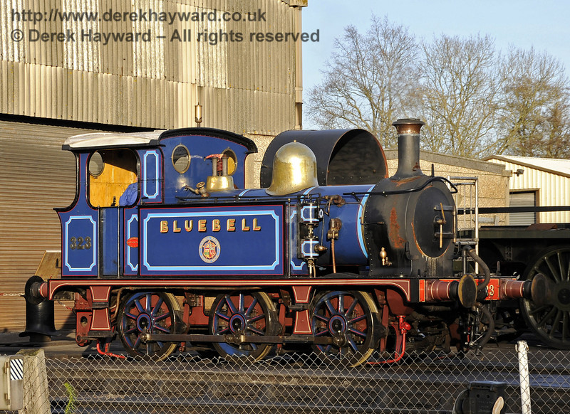 323 Bluebell on shed at Sheffield Park.  10.12.2011  3308