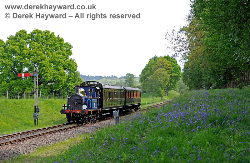 The bluebells are in bloom as 323 approaches Kingscote. 14.05.2017 15275