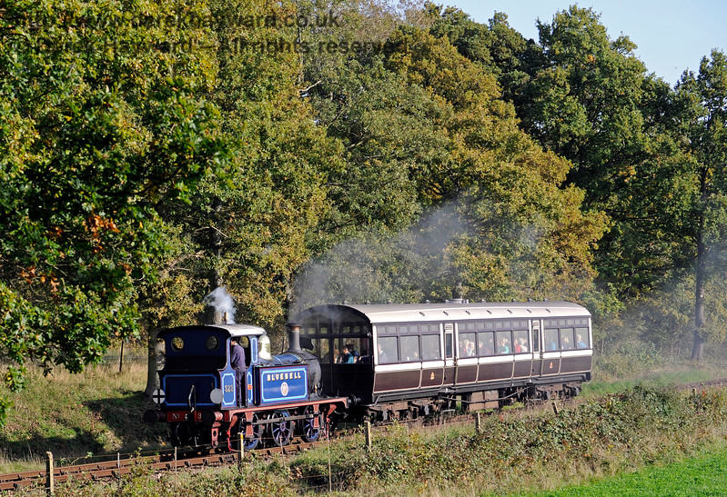 323 North of Sloop Bridge with an Autumn Tints Special. 20.10.2015 12265