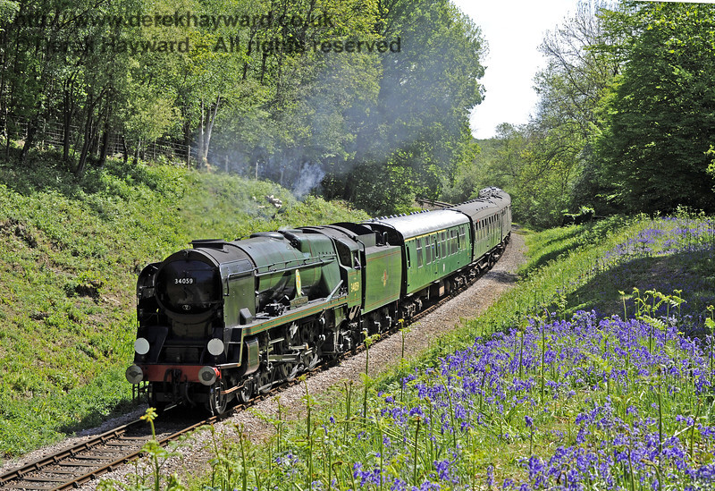 34059 Sir Archibald Sinclair amongst the bluebells in Lindfield Wood.  03.05.2011  1040