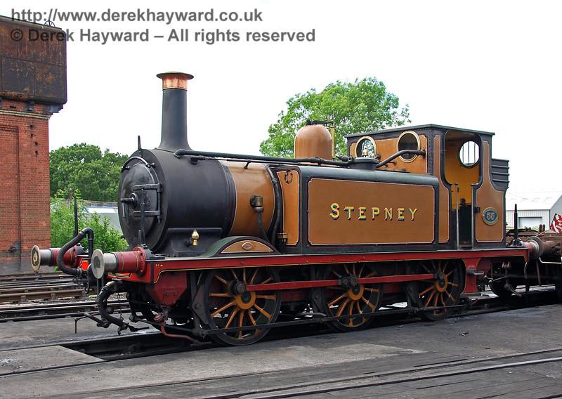 Stepney on shed at Sheffield Park.  17.06.2009