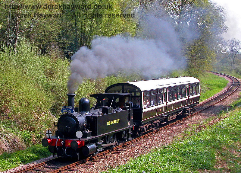 LSWR Adams Dock Tank 96 Normandy on a Bluebell Special in Lindfield Wood shortly before being taken out of service. 04.05.2006