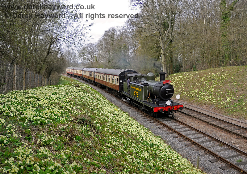 B473 amongst the primroses at Leamland Bridge with a southbound Wealden Rambler. 10.04.2015 12188