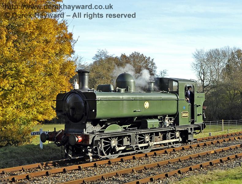 3650 poses at Kingscote.  18.11.2012  5839