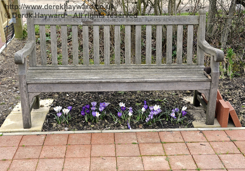 A lovely display of bulbs is now florishing under Roy Skilton's memorial seat.  20.03.2012  3876