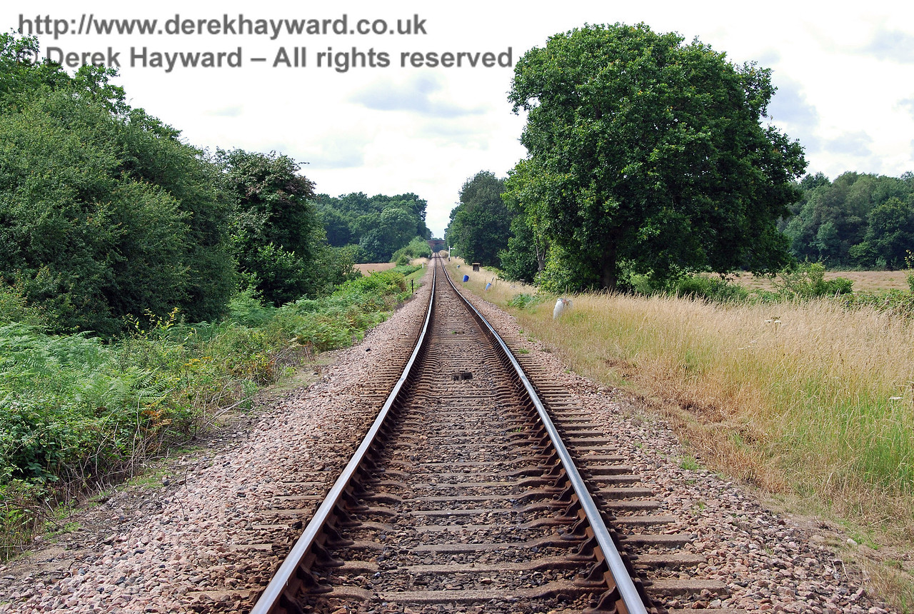 The  actual view north up Freshfield Bank on the Bluebell Railway featured in the previous picture.  1407.2007