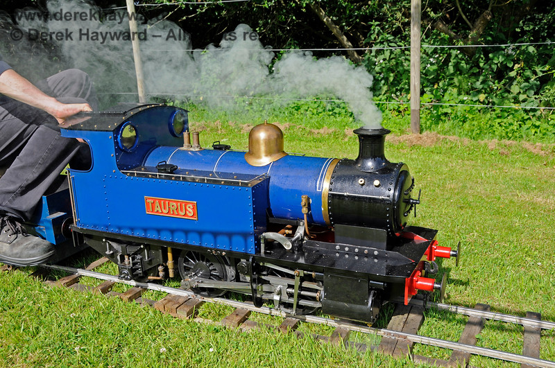 The miniature railway in operation at Kingscote.  Model Railway Weekend, 29.06.2019 19596
