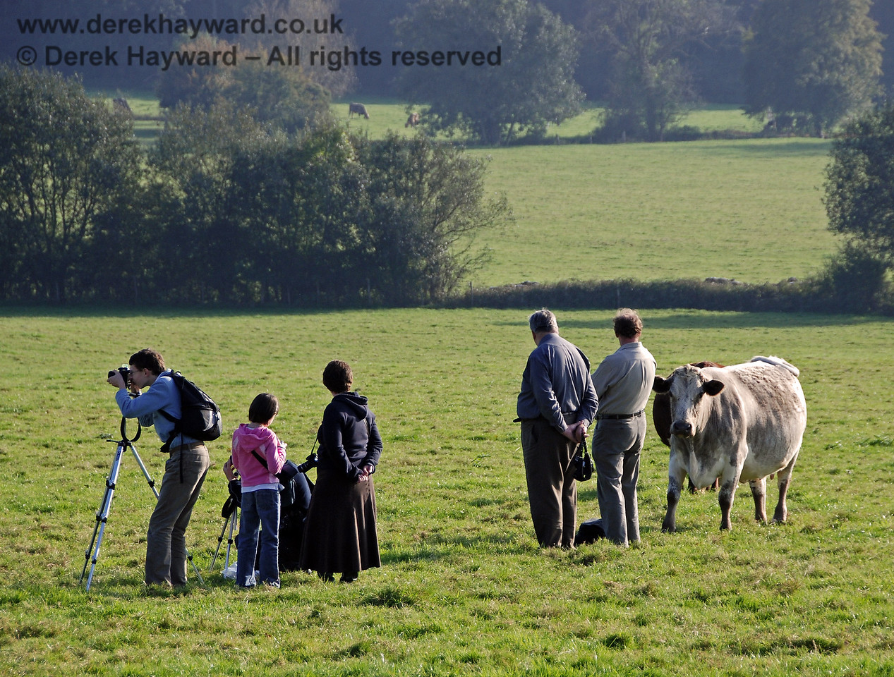Ignore the advancing cow and keep taking the pictures.  Freshfield Bank 21.10.2007