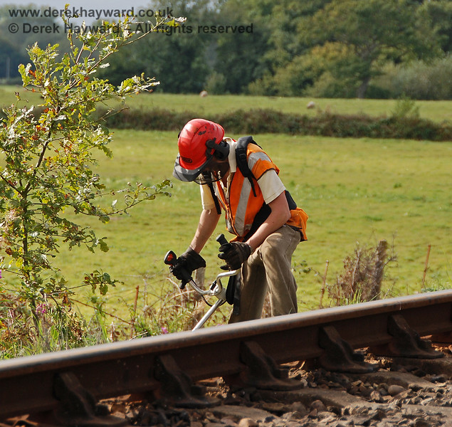 Jon Bowers attepting to single-handedly clear the lineside on Freshfield Bank.  He was so busy that he did not notice a lurking photographer.  23.09.2007