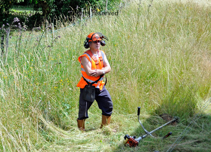 """Nip out and cut the grass"", they said.  ""No one told me it was this high"".  Kingscote 18.07.2015 13291"