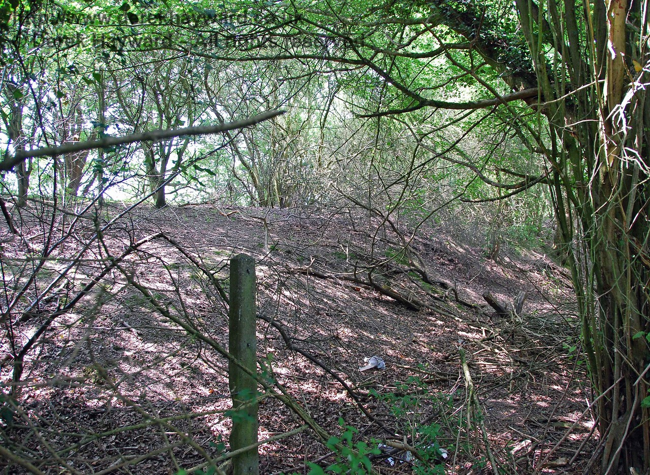 In finding another route this shot of the eastern side of the embankment shows the reasonably substantial earthworks.  The fence has long gone, but the posts remain.