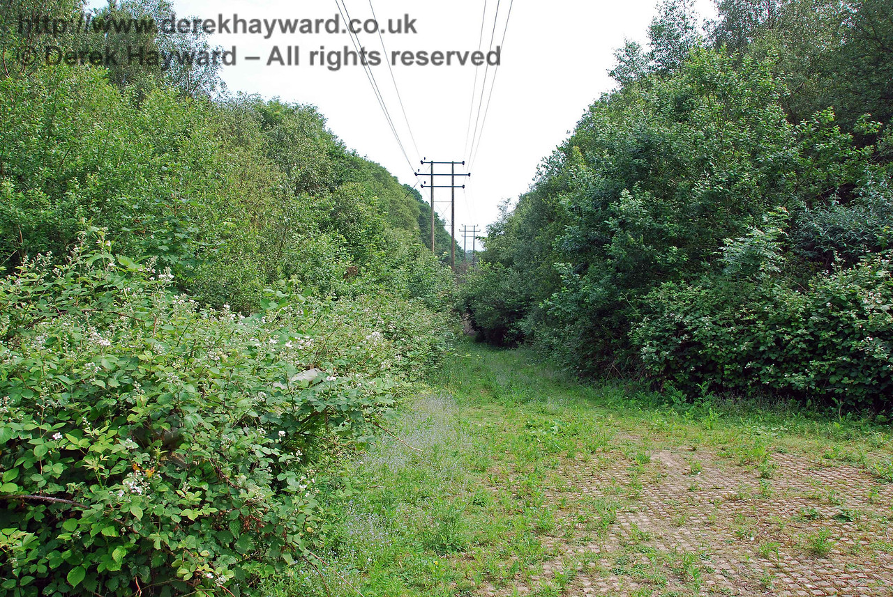This is the site of Oldpark Wood accommodation bridge, which has been demolished and filled in.  This view looks south into the cutting.  A ramp has been built with material designed to give vehicles a good grip.  It is assumed that this is an access for power line crews, but the area is so overgrown that in practice no vehicle could get in more than a few hundred yards.