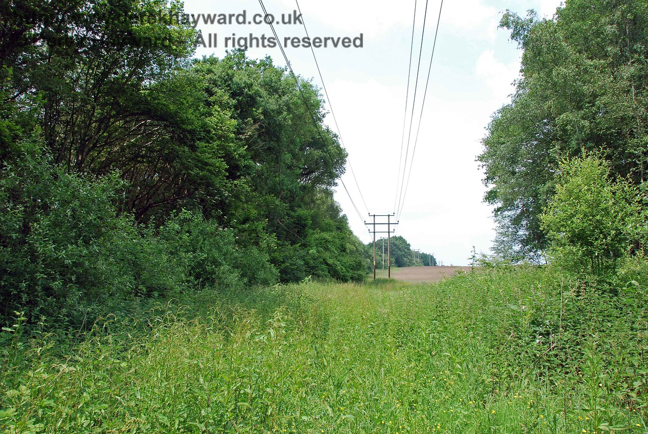 The embankment is so overgrown that even the power company thought better of it, and the cables run north through the fields on the east side of the old route.