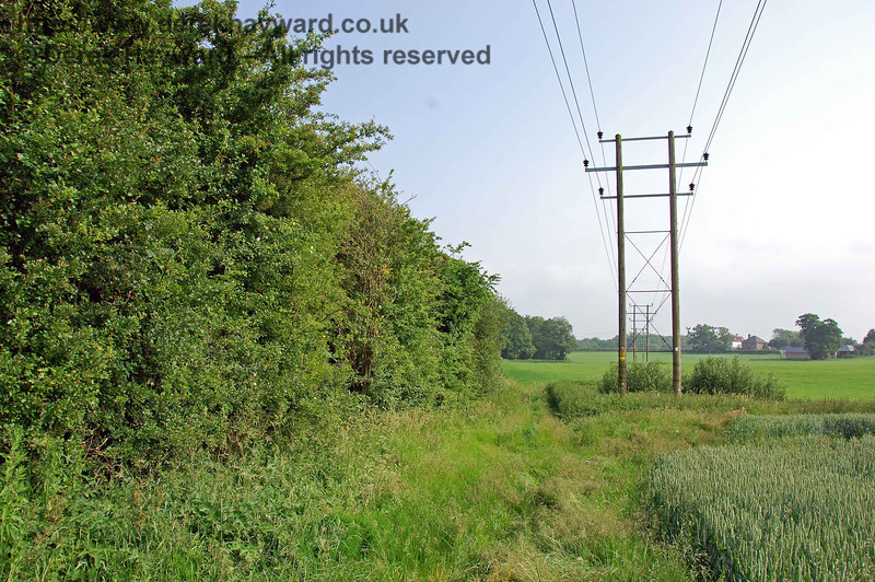 Passing through the trees and looking south again, the power lines have been routed west of Barcombe and come across the fields to join the trackbed.