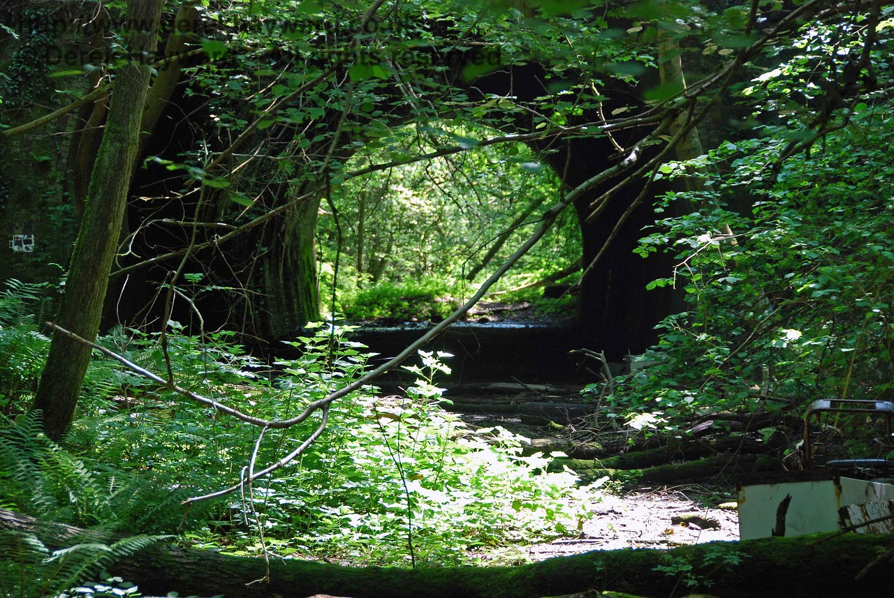 This is the northern portal of Cinder Hill Tunnel, looking south.  Trees prevent a clearer shot of this end of the tunnel.