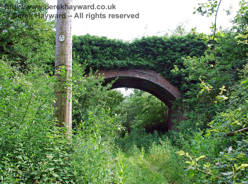 This view looks south under Brickyard Farm bridge towards the jungle.  Deer wander the area, and have presumably learned to use machetes to get through!