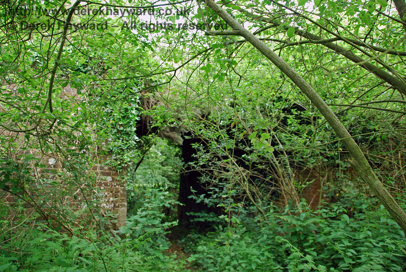 A public footpath goes under an overbridge at this point, but it might be fair to say that the route is quite effectively camouflaged! There is a bridge in here!