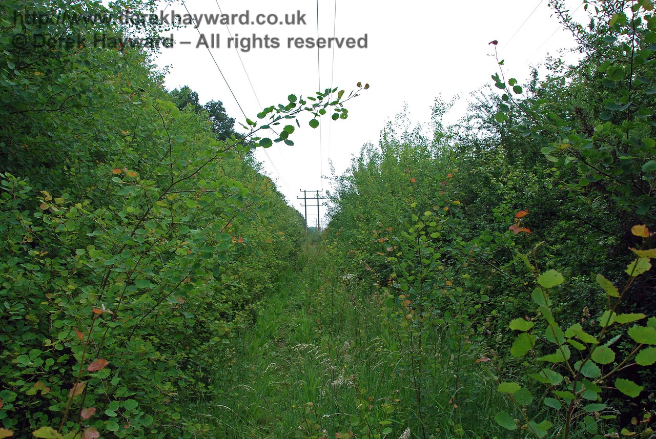 After a short distance any progress south towards the gradient down to Barcombe is blocked by heavy undergrowth.