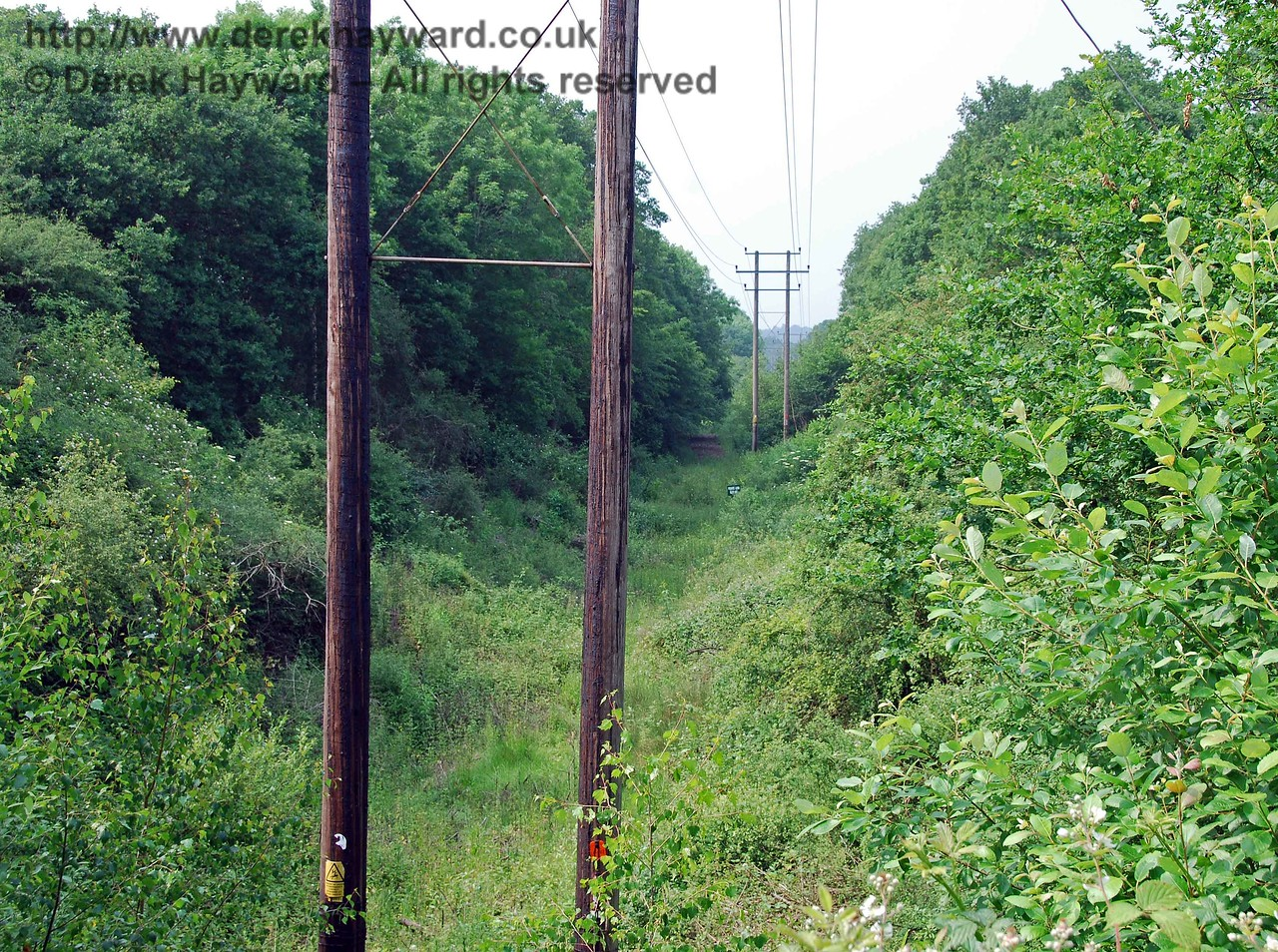 To the east and west of the Oldpark Wood accommodation bridge site are large notices indicating that the land is private.  These notices can only be aimed at walkers coming up the old trackbed, as there is no other access.  This view looks north with a slightly longer lens (see next picture).