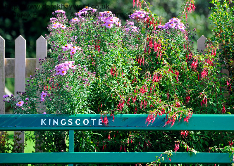 Flowers at Kingscote Station.  24.09.2016 13932
