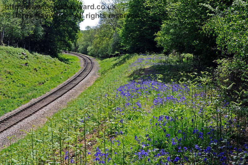 Lindfield Wood can be a good site for bluebells if the lineside has been trimmed back before they appear.  This view looks south.  03.05.2011 1015