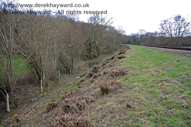 The eastern side of the line north of Lindfield Wood after lineside clearance.  This view looks south towards Lindfield Wood.  09.03.2011 6192