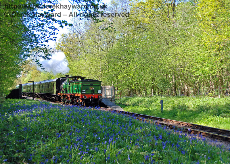 592 hauls a service train south through Ketches Halt during bluebell season. 26.04.2009