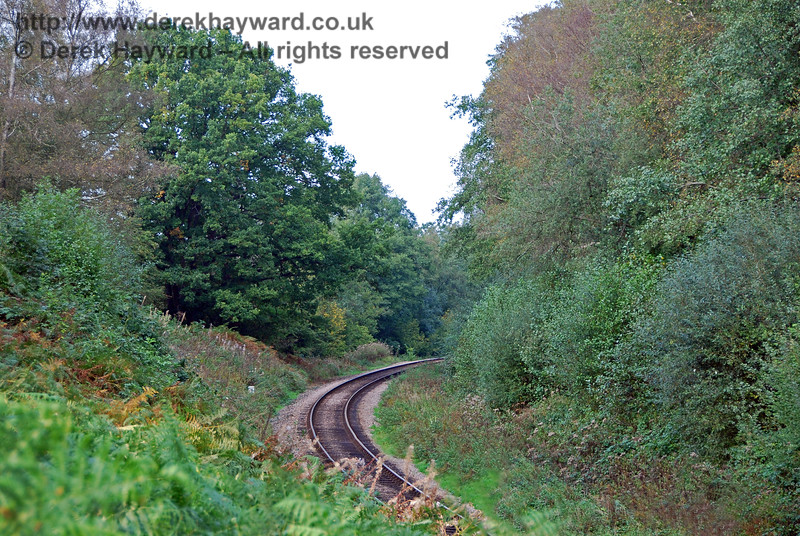 An old view from 2007, looking north, shows the degree to which Lindfield Wood used to be overgrown.  It was quite a challenge to reach the position necessary to take this shot.   05.10.2007 0056