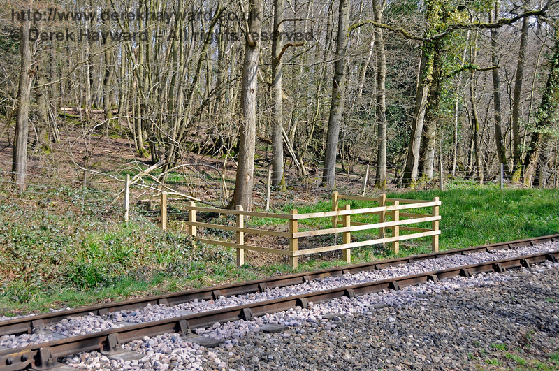 A closer view of the new fencing in Lindfield Wood.  06.04.2015 12093