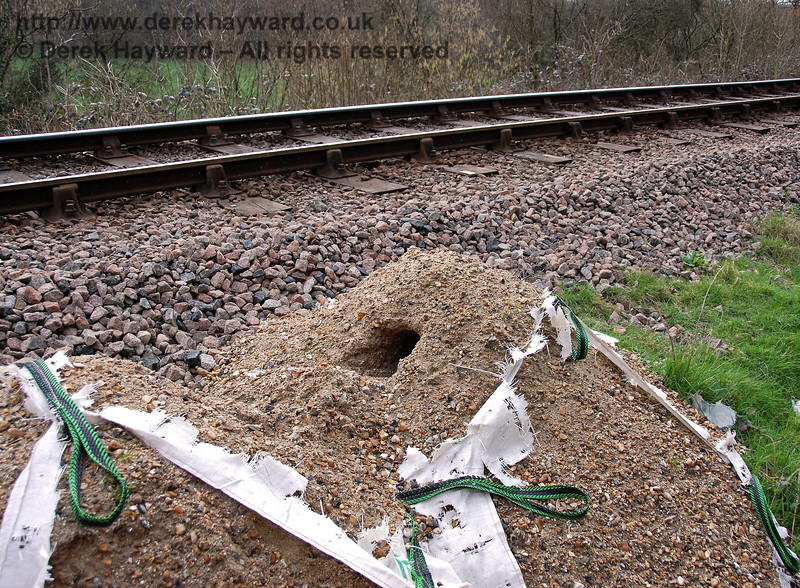 Someone's pile of ballast in Lindfield Wood is a hotel for the local wildlife... 24.02.2007