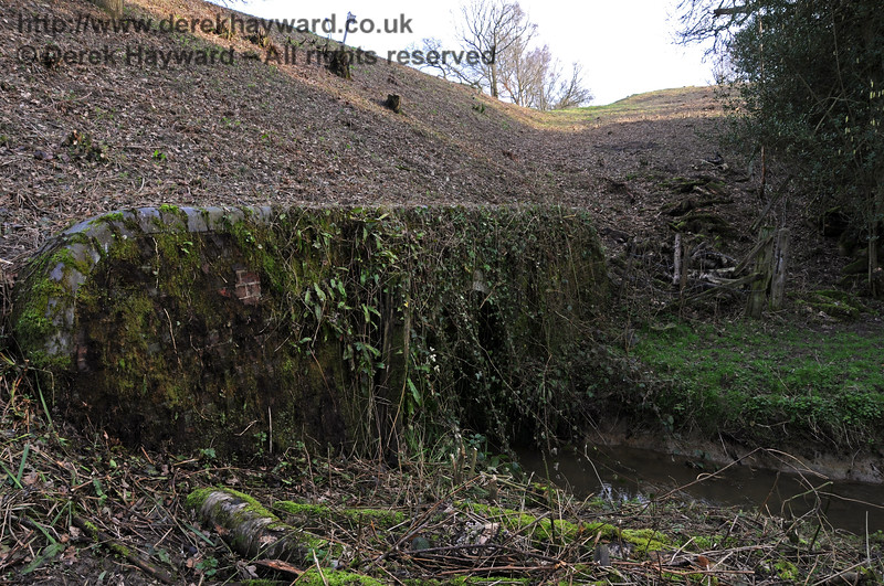This is the western mouth of the culvert, looking south.  The lineside clearance team apparently overlooked the ivy.  24.02.2011 6059