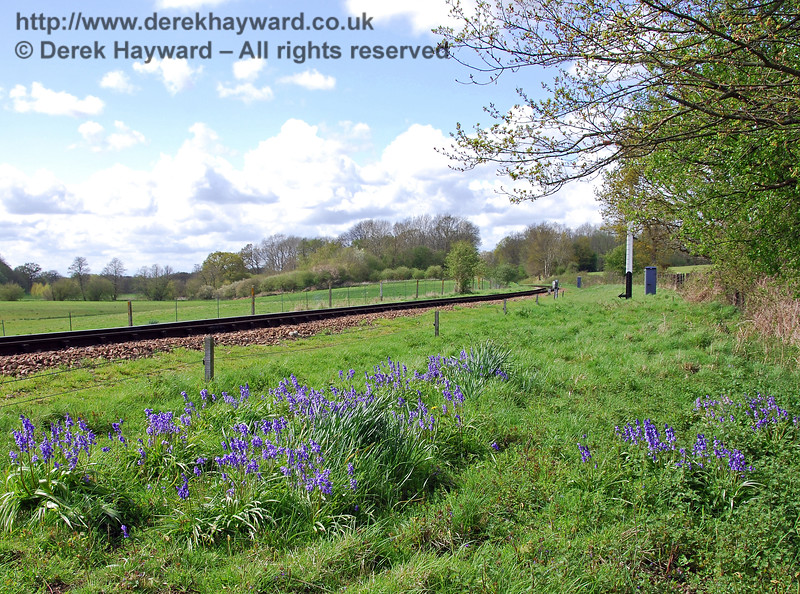The first signs of The Bluebell Railway are just north of Poleay Bridge. In spring Bluebell Specials allow the flowers to be viewed from the train. 01.05.2008.