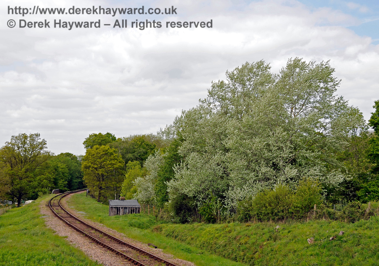 Looking from the embankment in the previous picture north towards the site of the former Freshfield Halt, which was located on the eastern side beyond the PWay hut.  The trees are at their best in May.   In the distance the parapets of Monteswood Lane Bridge can just be seen.  17.05.2015 12607