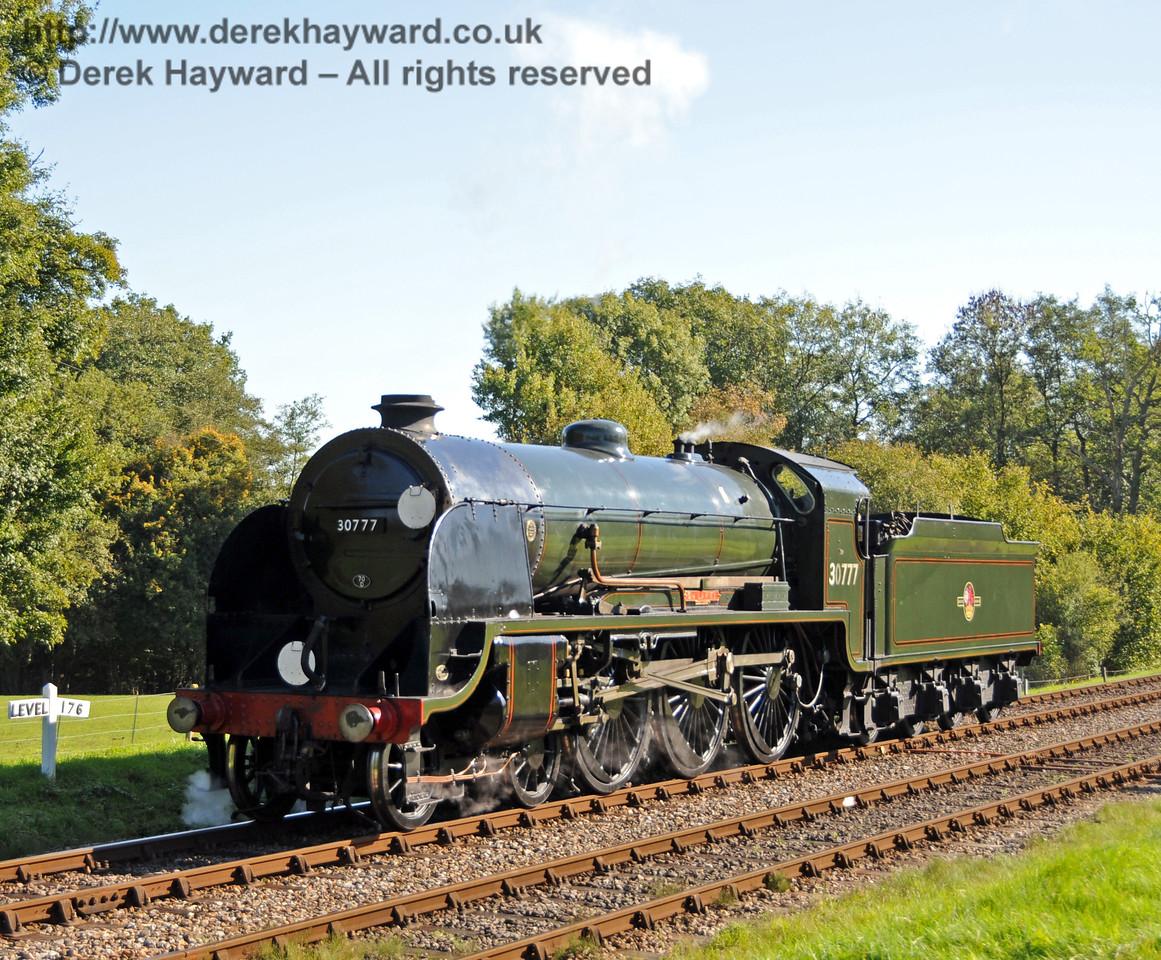 30777 Sir Lamiel poses at Kingscote. 10.10.2010  5083