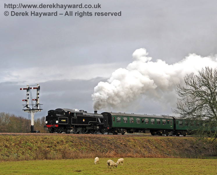With another heavy shower beginning, 42085 leaves Sheffield Park. The sheep don't seem to mind, but I was a tad soggy by this stage... 21.02.2010